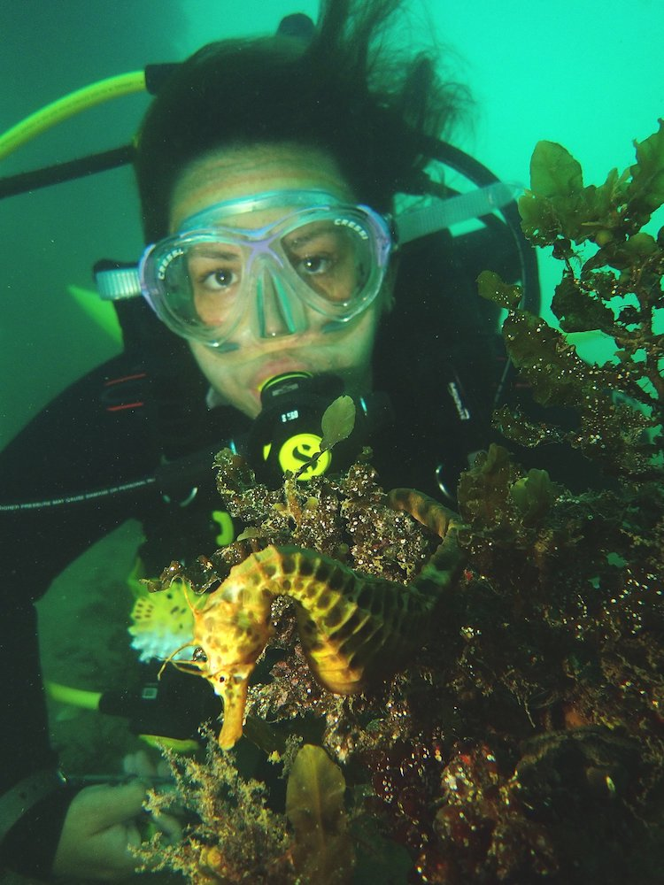 My Divemaster Journey: Corinne Telford